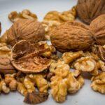 Jak sušit a skladovat vlašské ořechy