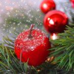 Co udělat, aby vánoční stromek vydržel co nejdéle?